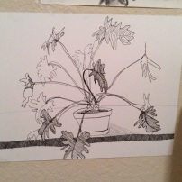 Plant (pen and ink)