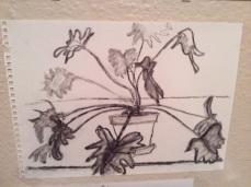 Plant (charcoal)