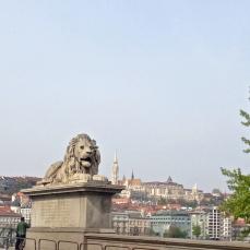 Lion and Buda