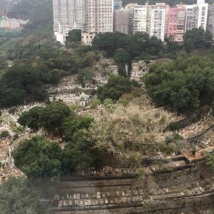 Giant Muslim cemetery behind my hotel